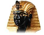 Search Zarifa's Store
